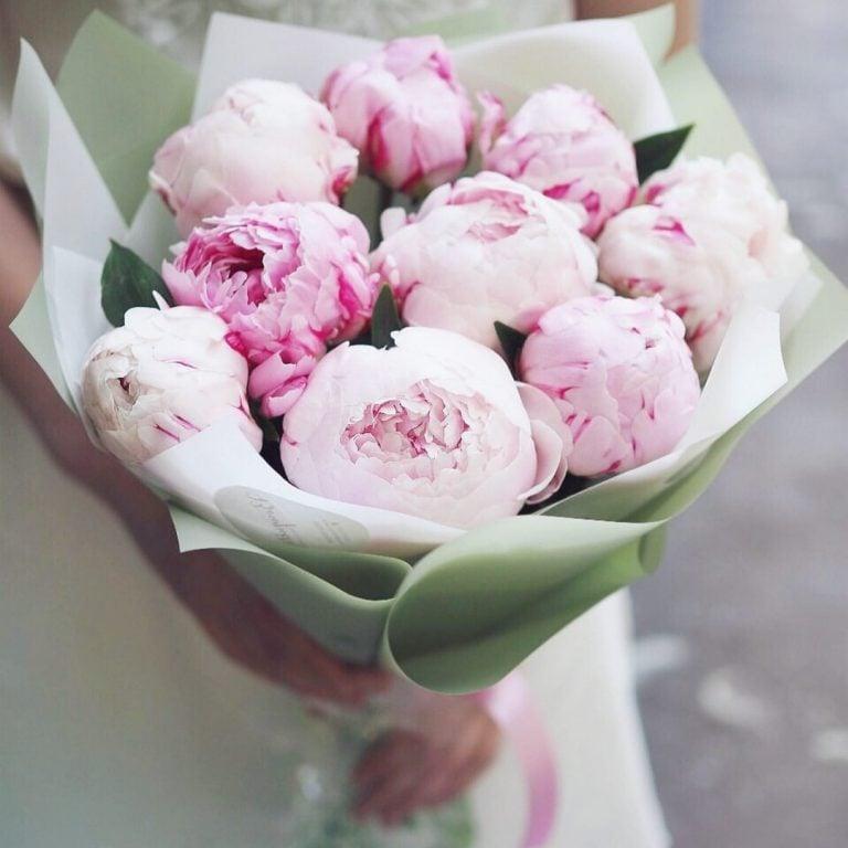 Доставка цветов днепр пионы, букет таллине база