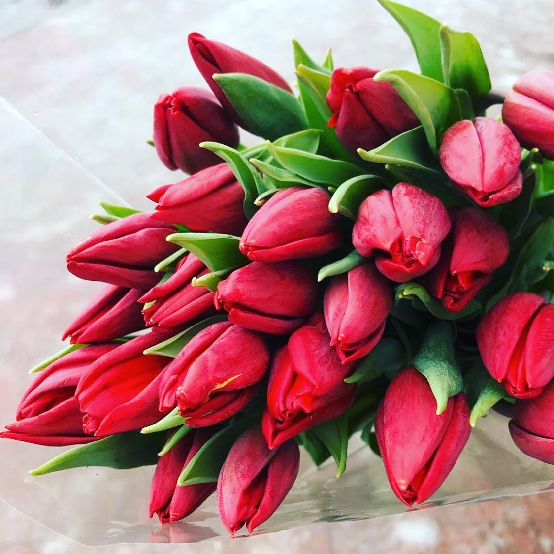 Открытки с красивыми букетами тюльпанов